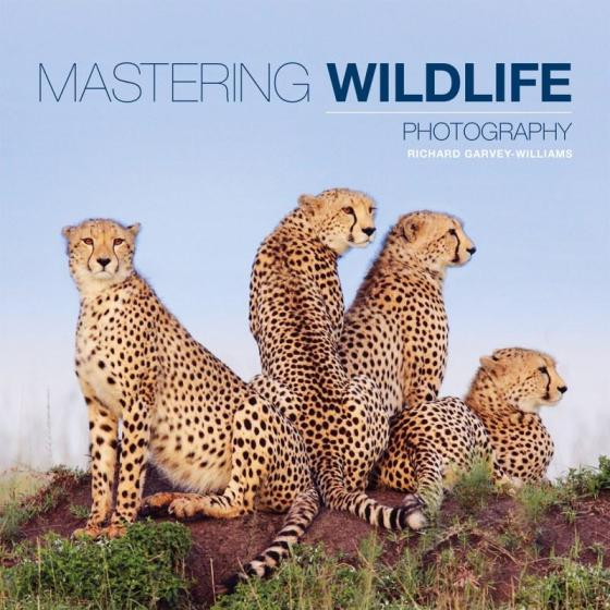 Image for Mastering Wildlife Photography