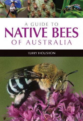 Image for A Guide to Native Bees of Australia