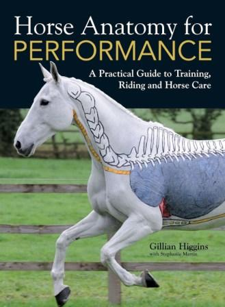 Image for Horse Anatomy for Performance: A Practical Guide to Training, Riding and Horse Care